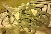 biciclete ninse